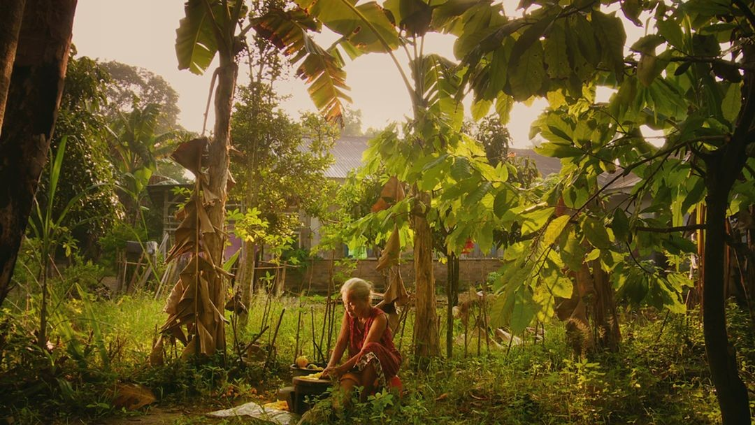Adi's mother, Rohani, cuts fruit under the trees around her home in Drafthouse Films' and Participant Media's The Look of Silence. Courtesy of Drafthouse Films and Participant Media.